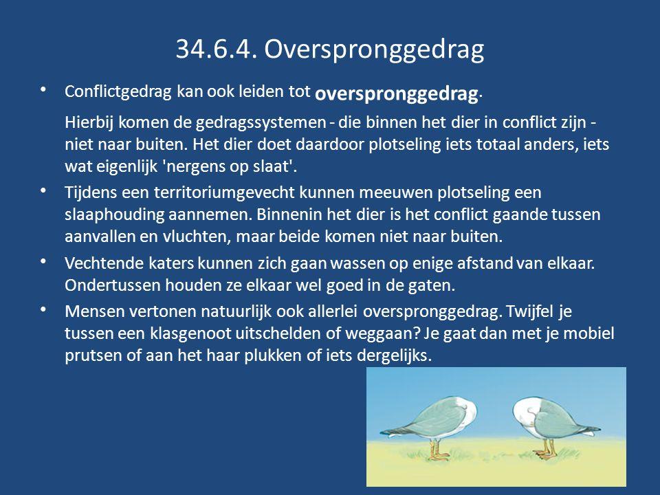 34.6.4. Overspronggedrag Conflictgedrag kan ook leiden tot overspronggedrag.
