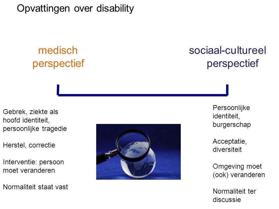 sociaal-cultureel perspectief