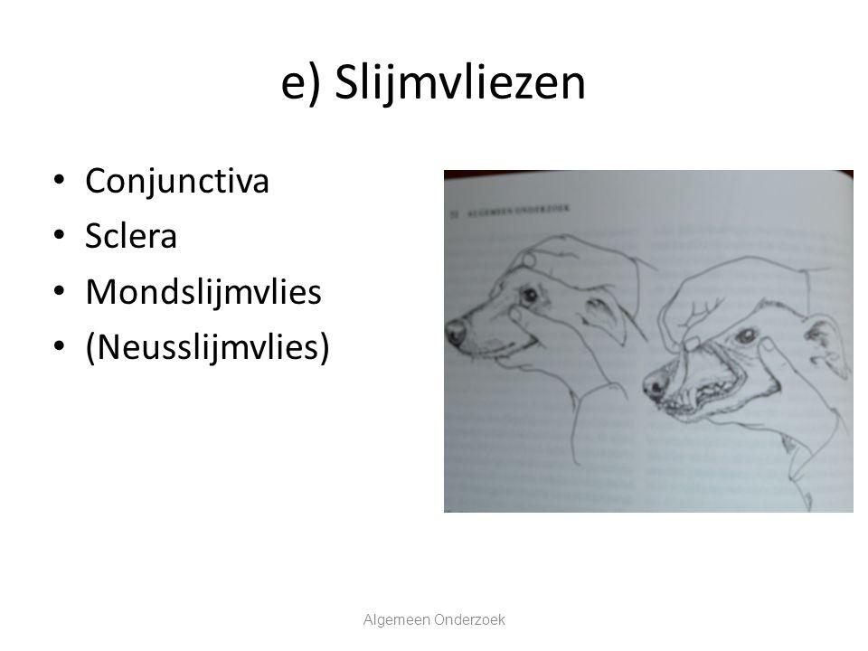 e) Slijmvliezen Conjunctiva Sclera Mondslijmvlies (Neusslijmvlies)