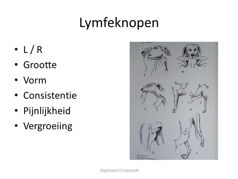 Lymfeknopen L / R Grootte Vorm Consistentie Pijnlijkheid Vergroeiing