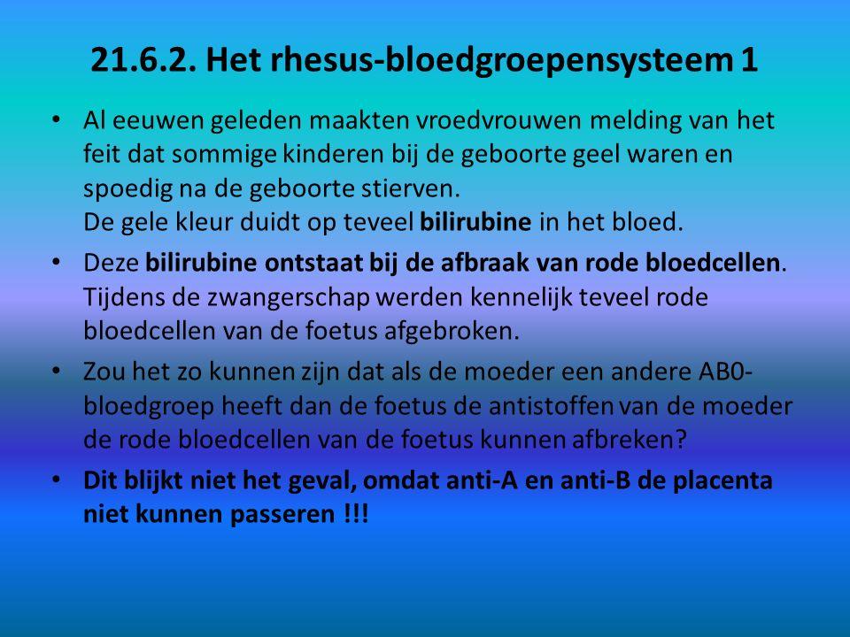 21.6.2. Het rhesus-bloedgroepensysteem 1