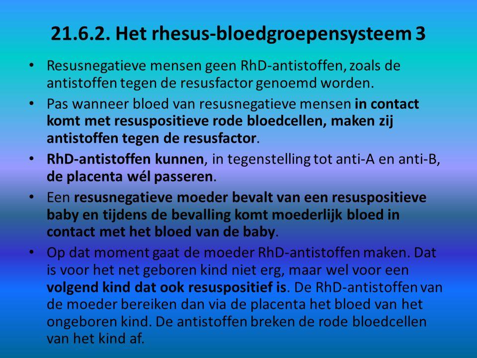21.6.2. Het rhesus-bloedgroepensysteem 3