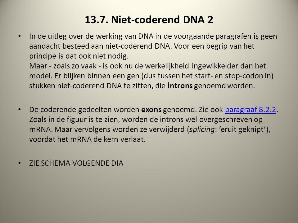 13.7. Niet-coderend DNA 2