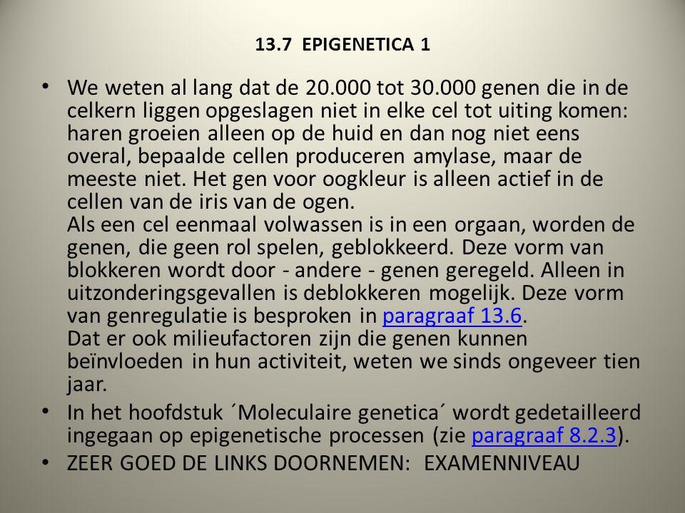 13.7 EPIGENETICA 1