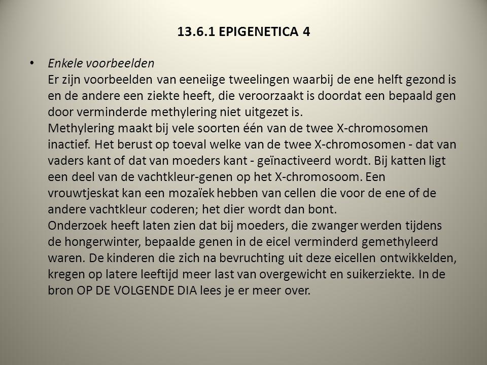 13.6.1 EPIGENETICA 4