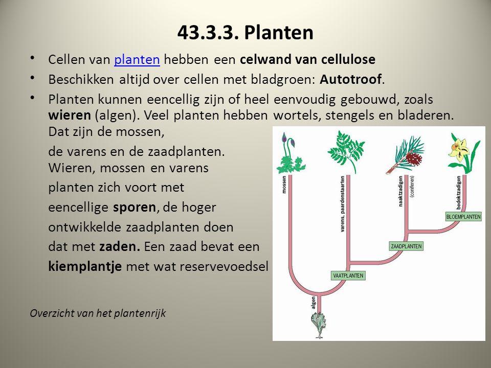 43.3.3. Planten Cellen van planten hebben een celwand van cellulose