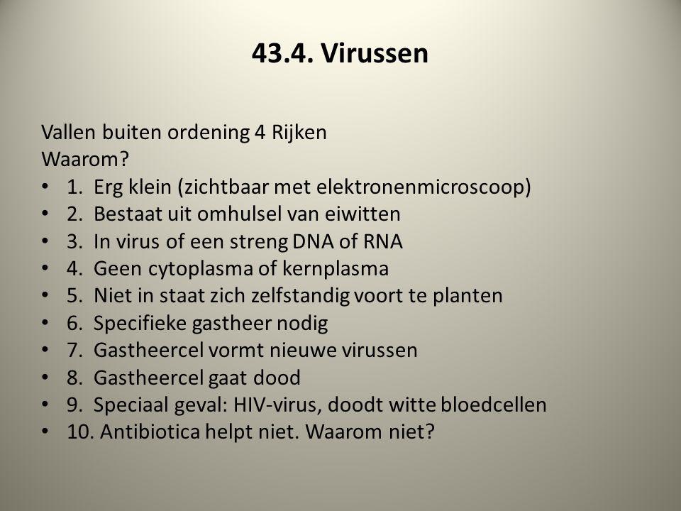 43.4. Virussen Vallen buiten ordening 4 Rijken Waarom