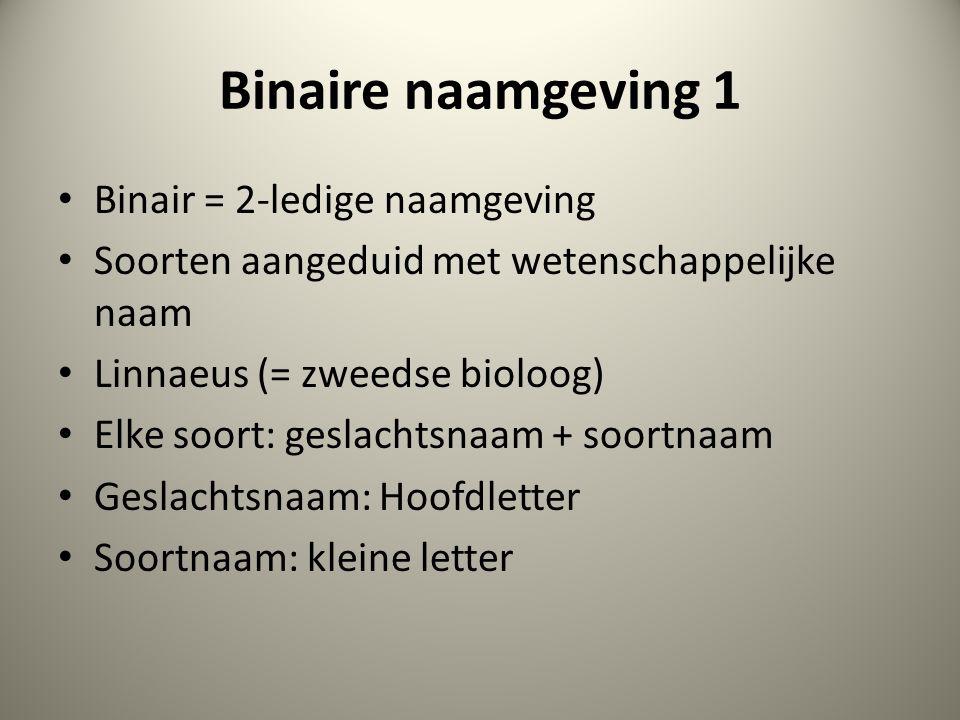 Binaire naamgeving 1 Binair = 2-ledige naamgeving