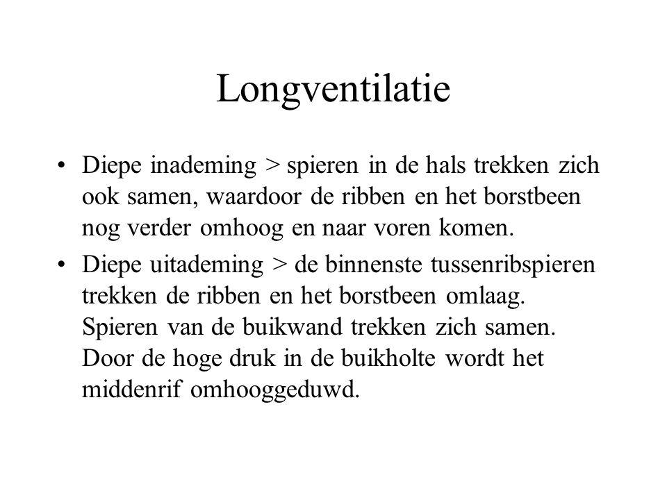 Longventilatie