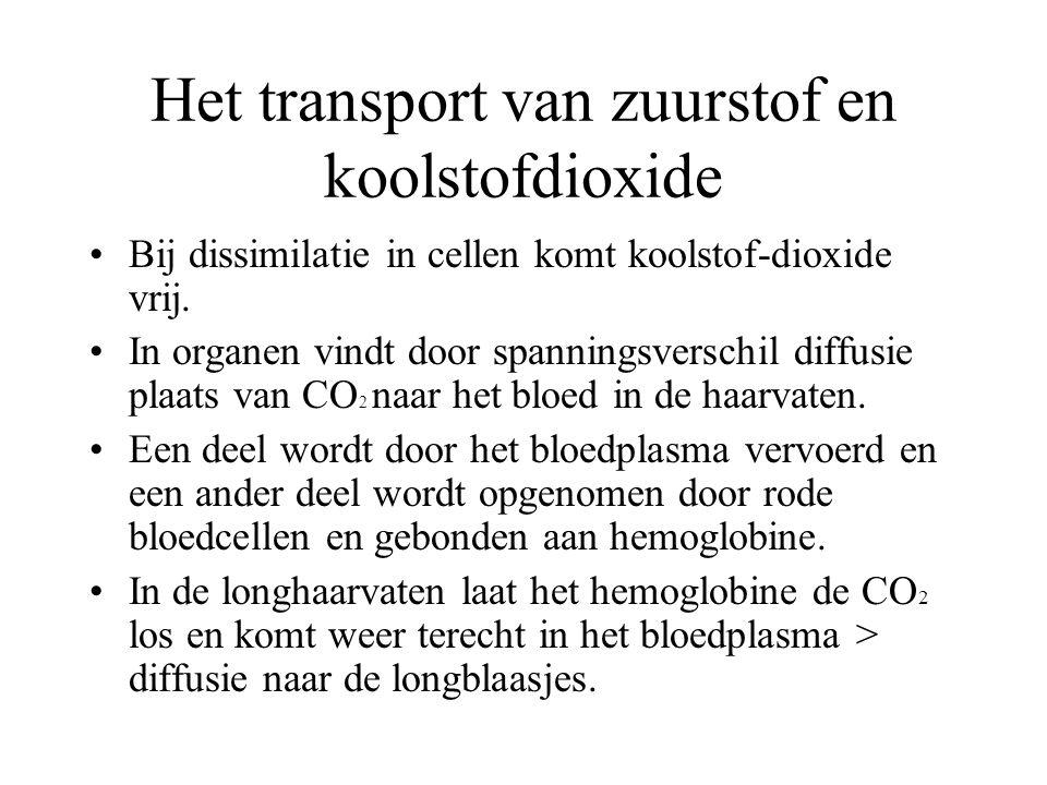 Het transport van zuurstof en koolstofdioxide