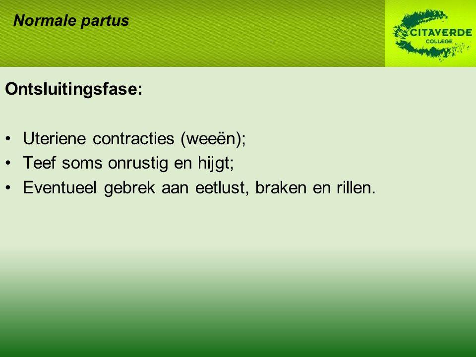 Uteriene contracties (weeën); Teef soms onrustig en hijgt;