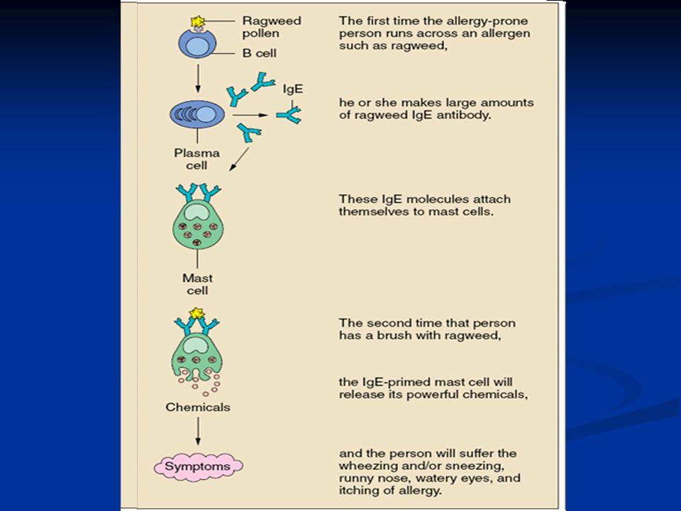 4. Vrijgekomen histamine