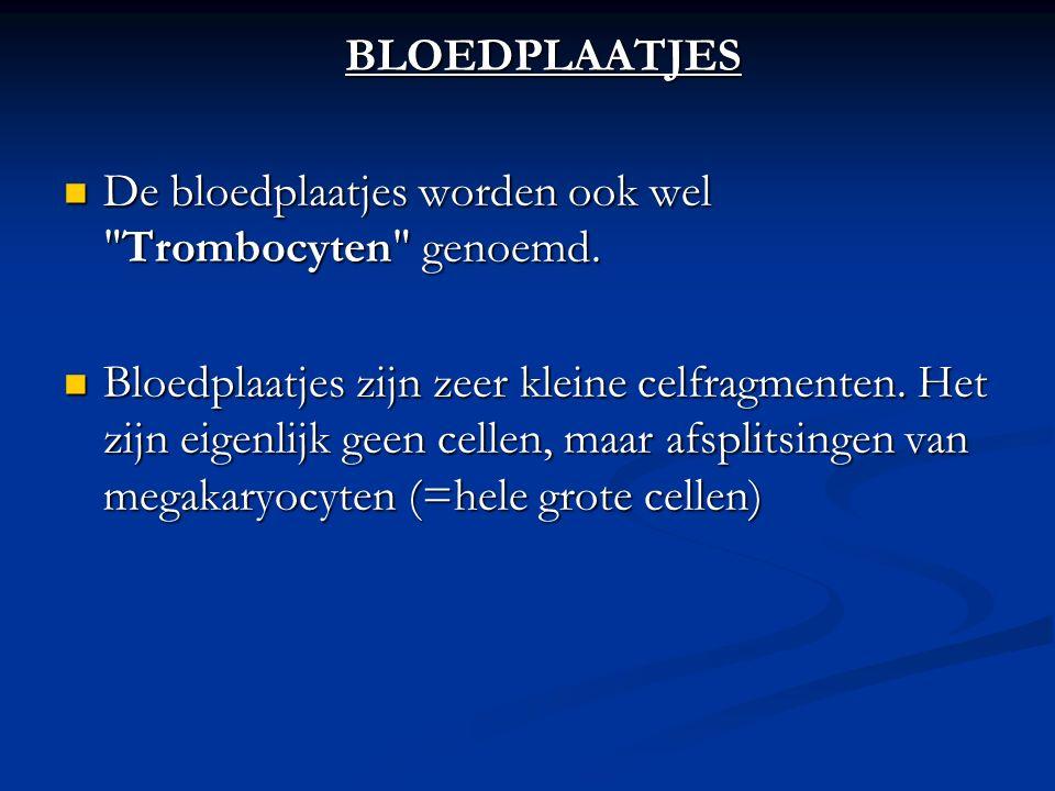 BLOEDPLAATJES De bloedplaatjes worden ook wel Trombocyten genoemd.