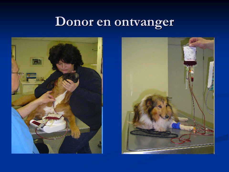 Donor en ontvanger