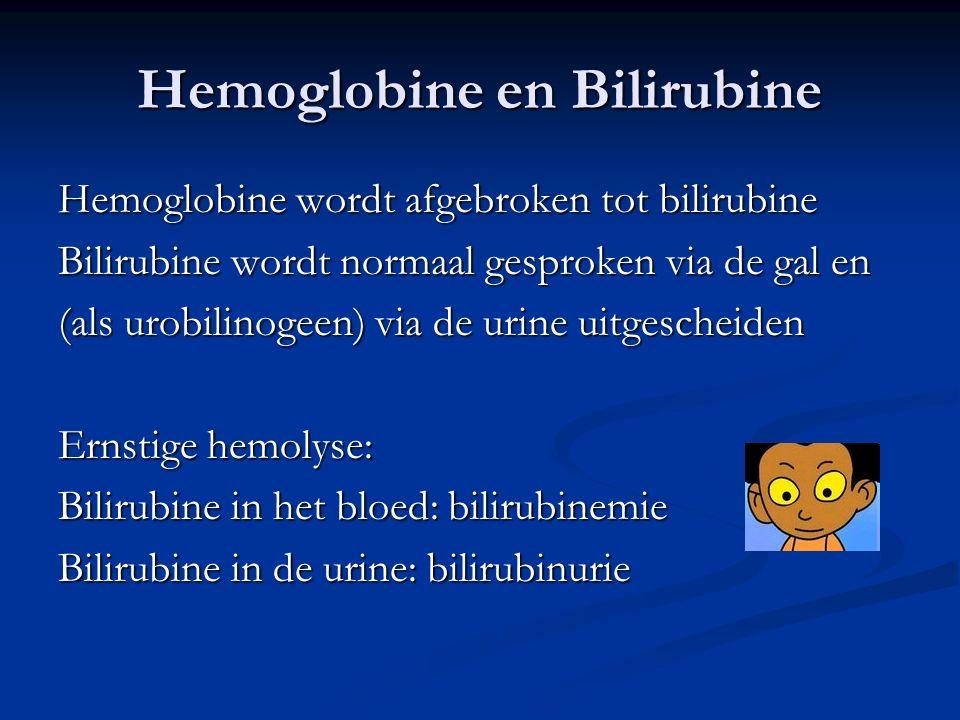 Hemoglobine en Bilirubine