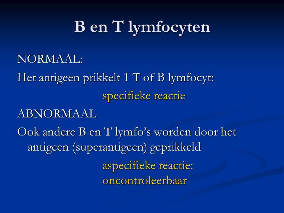 B en T lymfocyten NORMAAL: Het antigeen prikkelt 1 T of B lymfocyt: