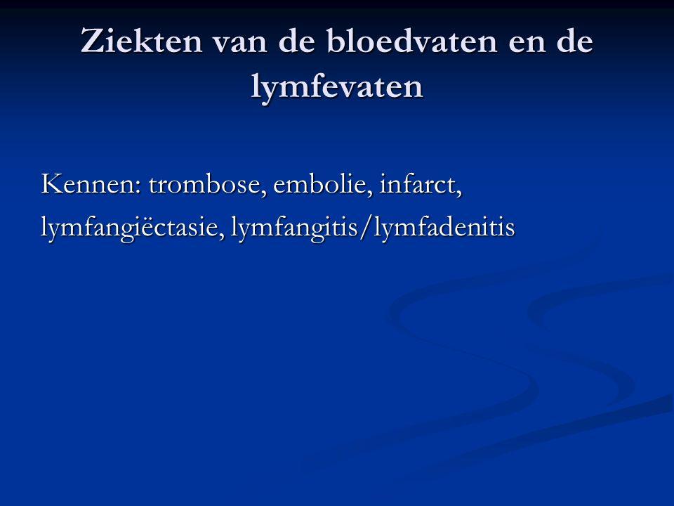 Ziekten van de bloedvaten en de lymfevaten