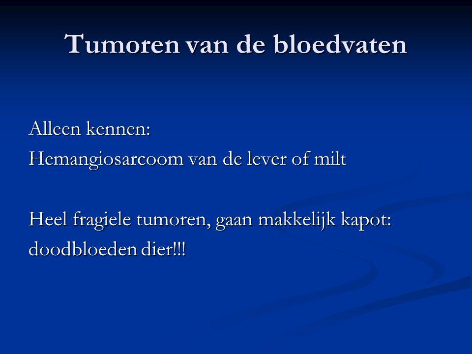 Tumoren van de bloedvaten