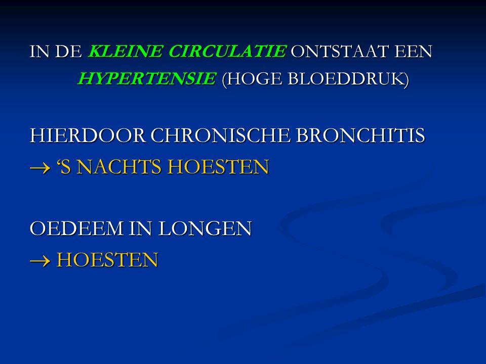 HYPERTENSIE (HOGE BLOEDDRUK)