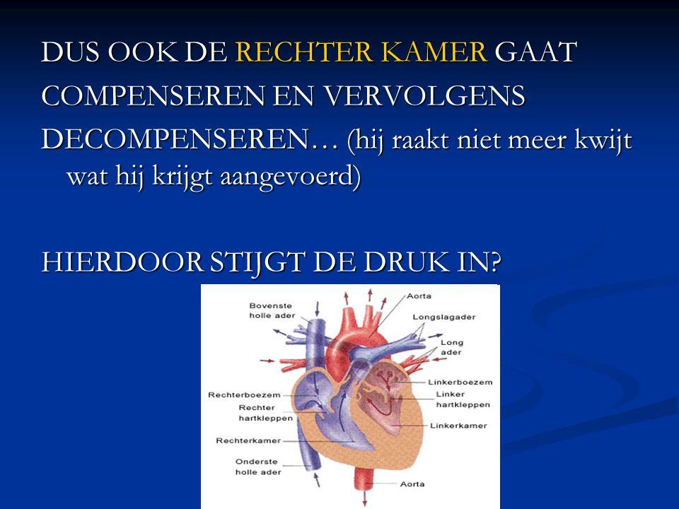 DUS OOK DE RECHTER KAMER GAAT