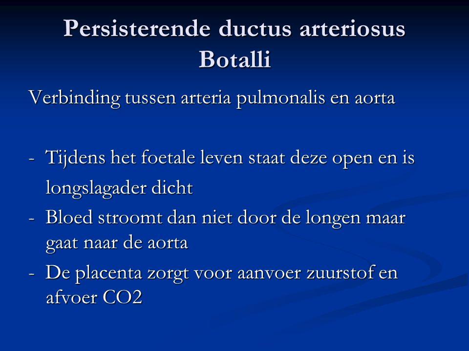 Persisterende ductus arteriosus Botalli