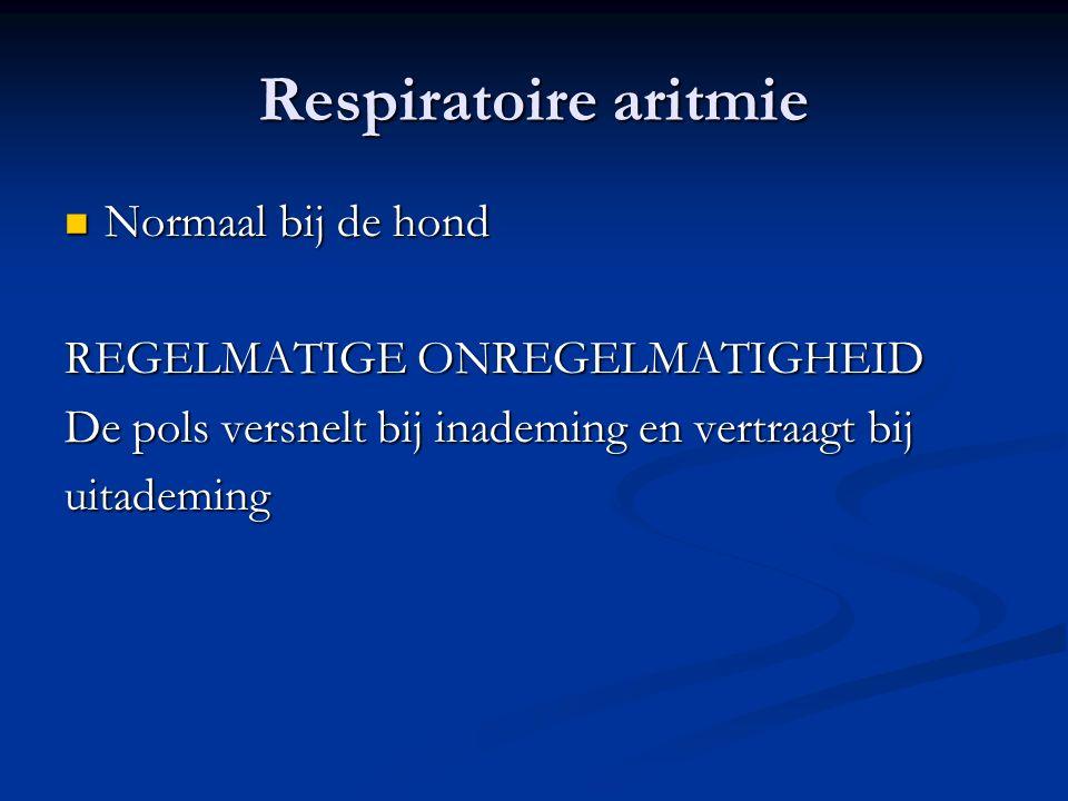Respiratoire aritmie Normaal bij de hond REGELMATIGE ONREGELMATIGHEID