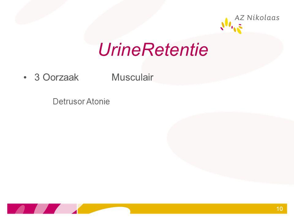 UrineRetentie 3 Oorzaak Musculair Detrusor Atonie