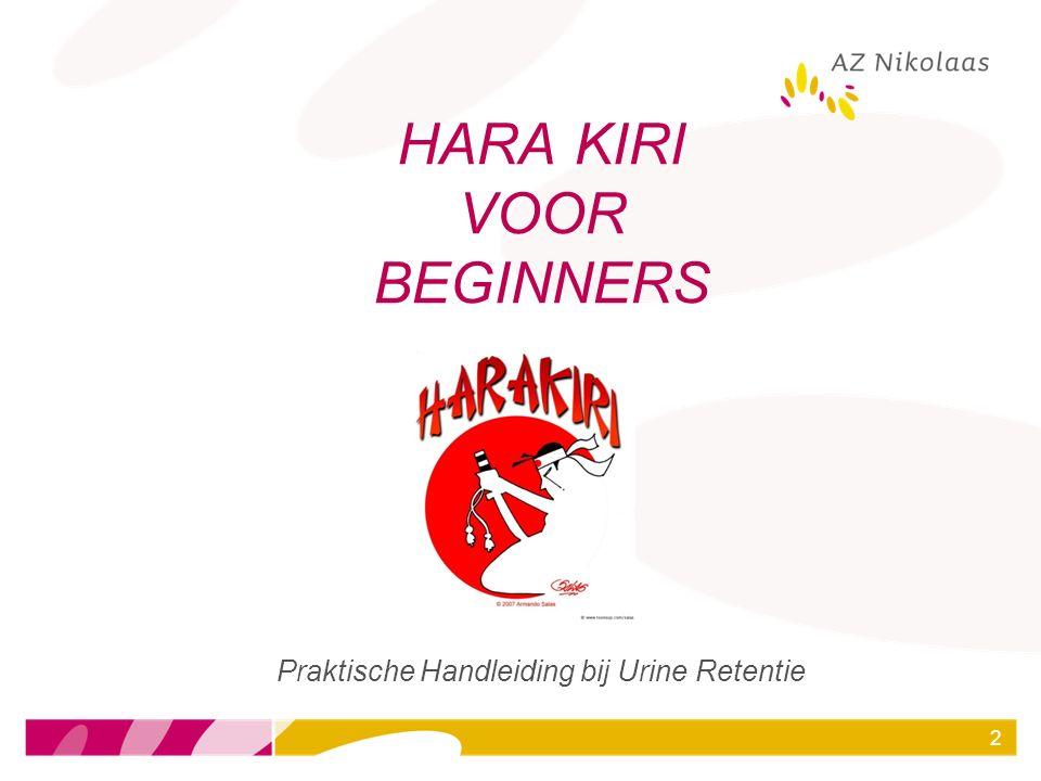 HARA KIRI VOOR BEGINNERS
