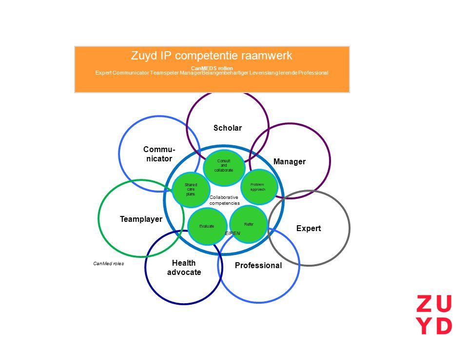 Zuyd IP competentie raamwerk