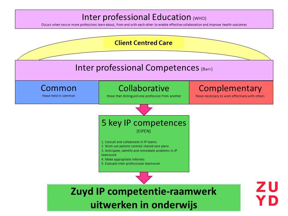 Zuyd IP competentie-raamwerk uitwerken in onderwijs
