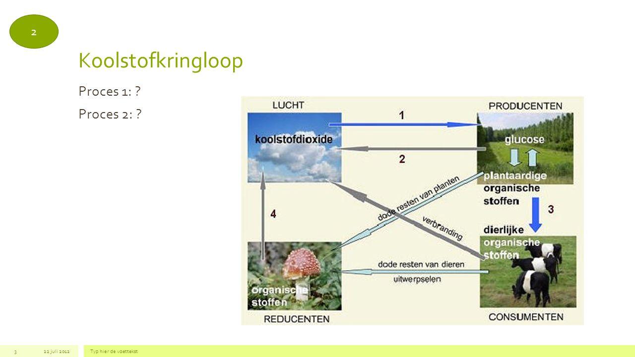 Koolstofkringloop Proces 1: Proces 2: 2 22 juli 2012