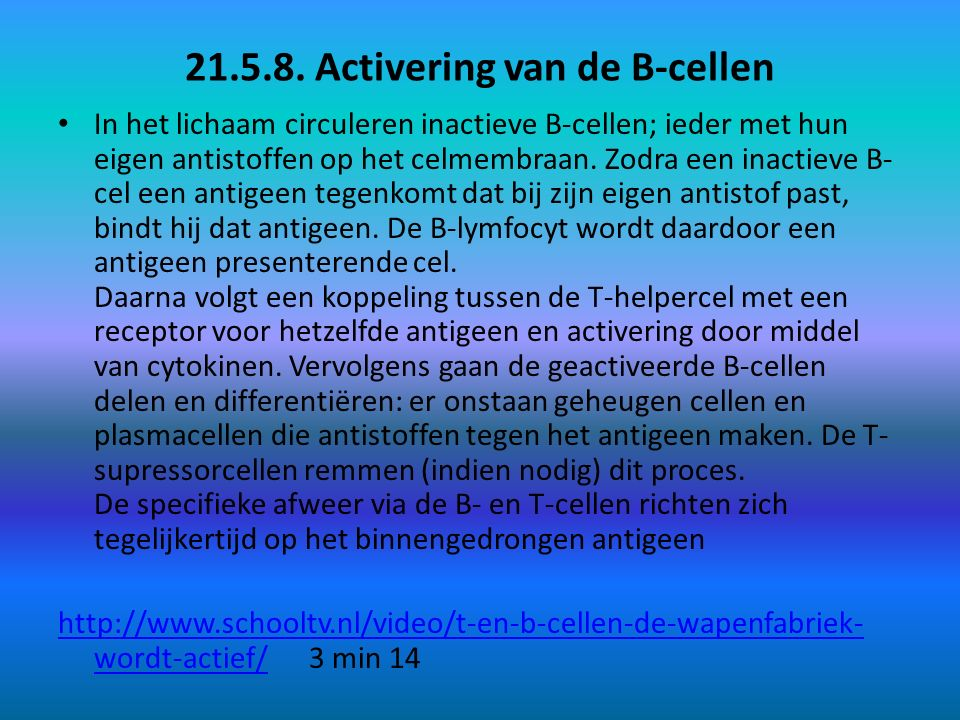 21.5.8. Activering van de B-cellen