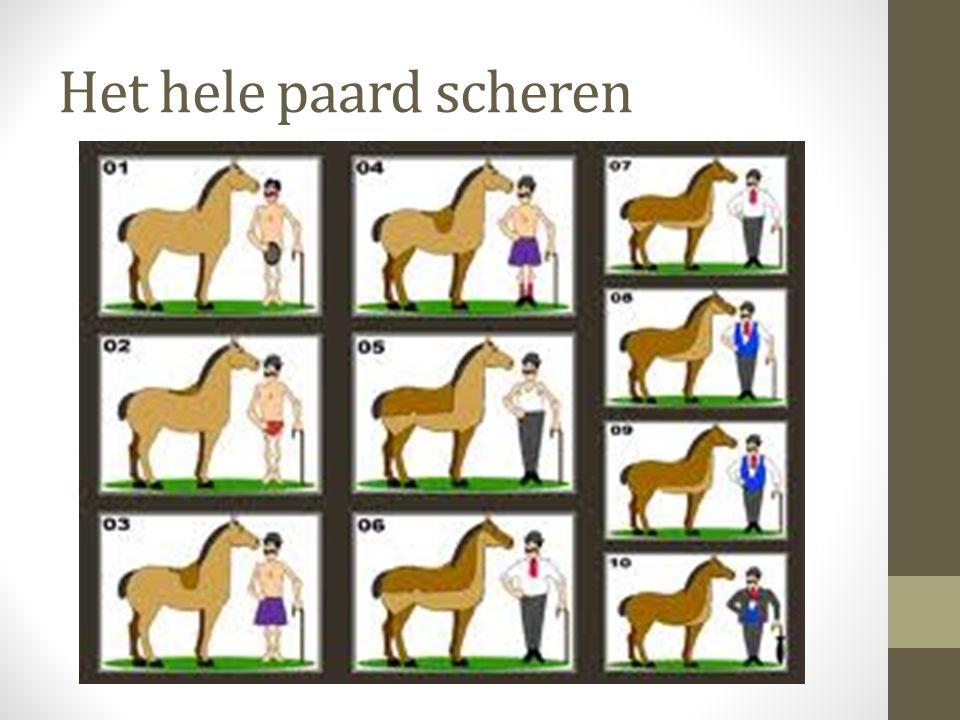 Het hele paard scheren