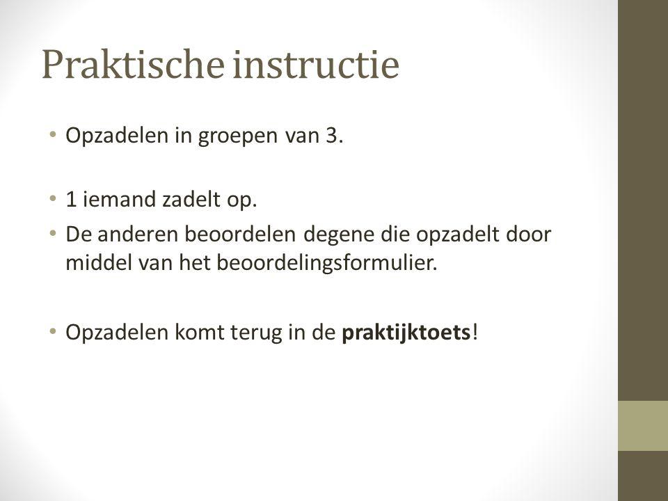 Praktische instructie