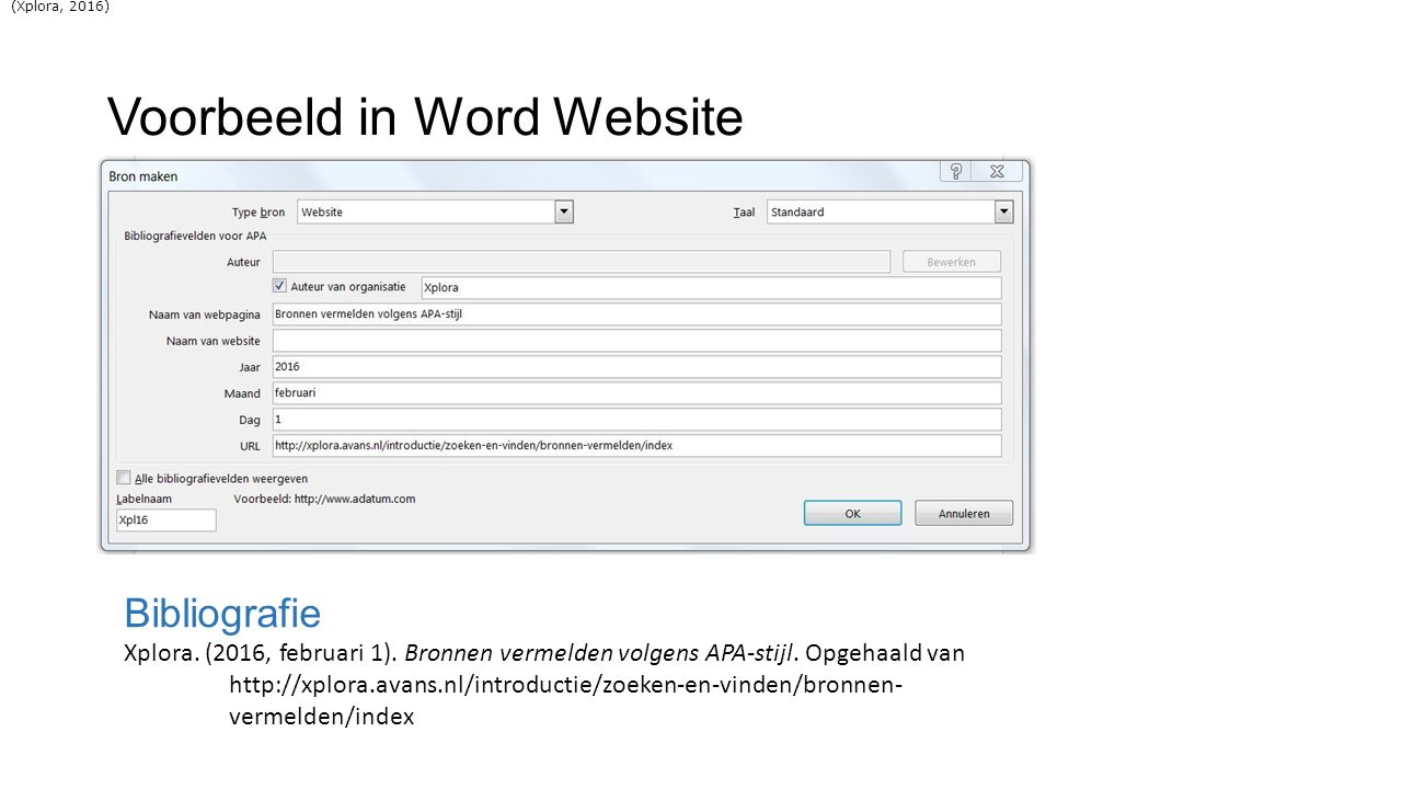 Voorbeeld in Word Website
