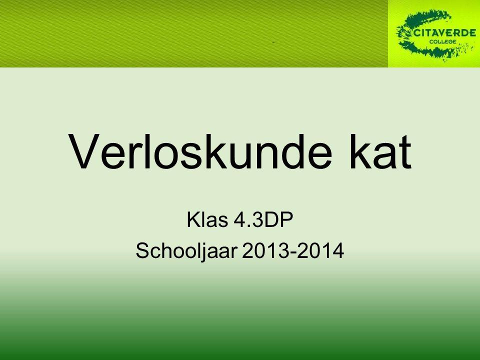 Verloskunde kat Klas 4.3DP Schooljaar 2013-2014