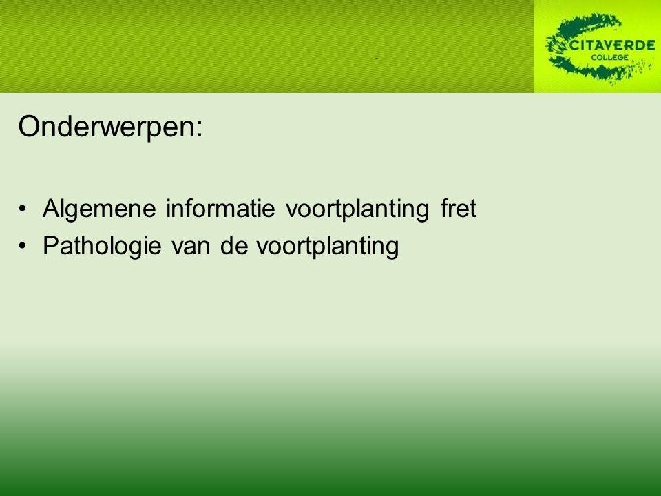 Onderwerpen: Algemene informatie voortplanting fret