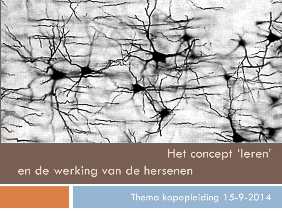 Het concept 'leren' en de werking van de hersenen