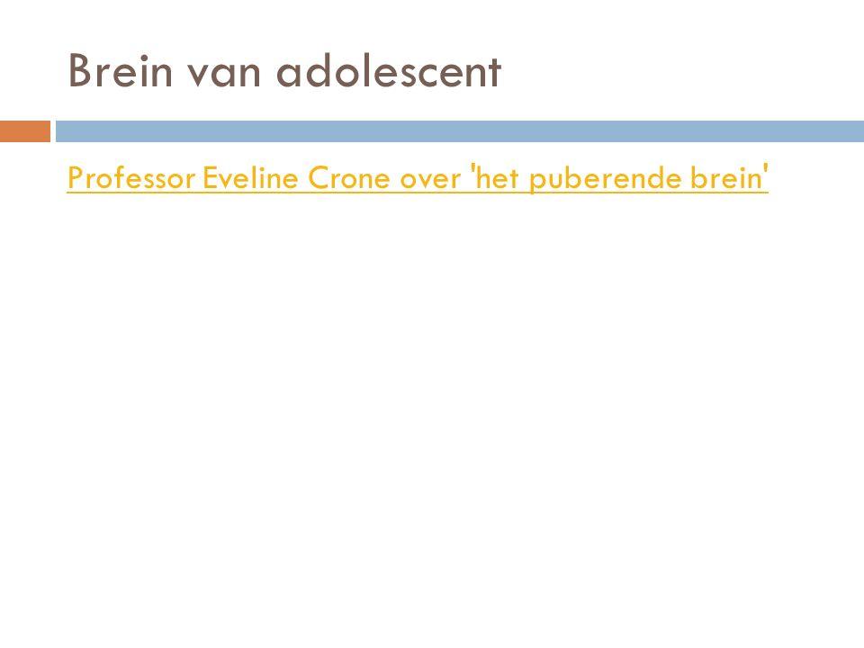 Brein van adolescent Professor Eveline Crone over het puberende brein http://www.youtube.com/watch v=c9G0amrVZCo.