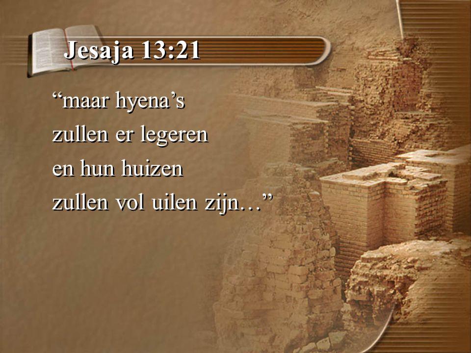 Jesaja 13:21 maar hyena's zullen er legeren en hun huizen