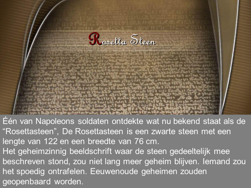 Rosetta Steen