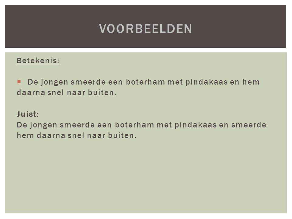 Voorbeelden Betekenis:
