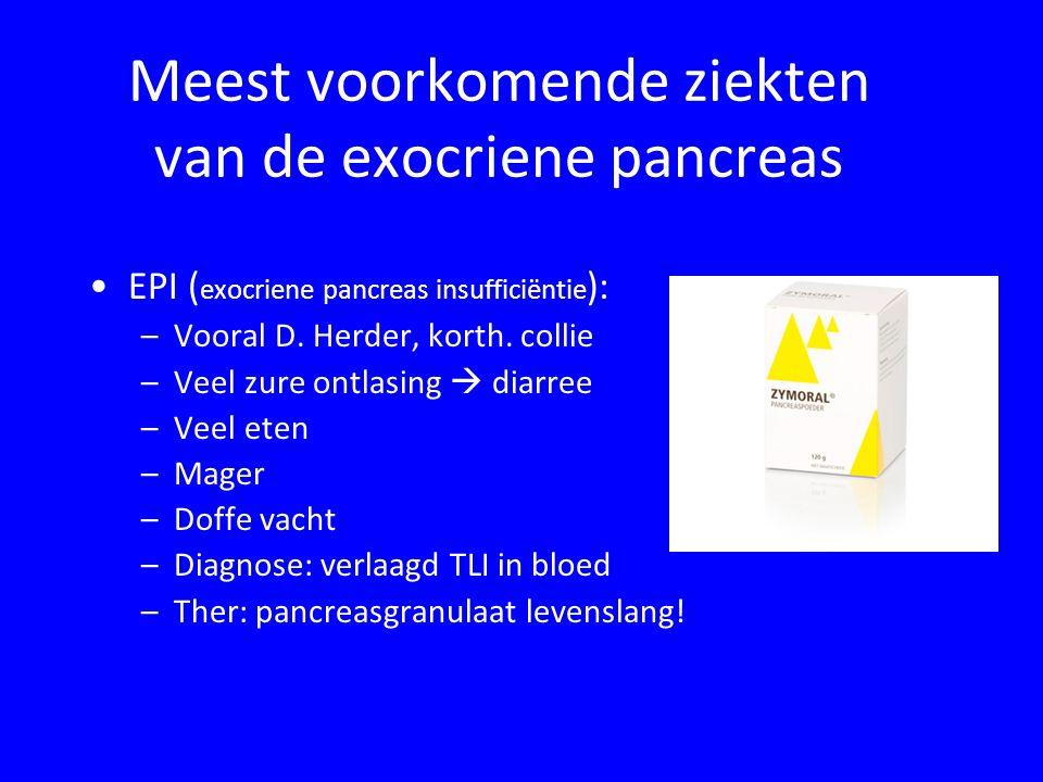 Meest voorkomende ziekten van de exocriene pancreas