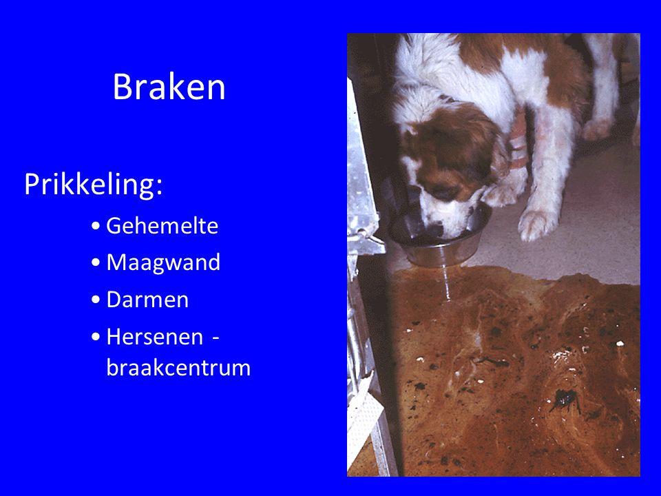 Braken Prikkeling: Gehemelte Maagwand Darmen Hersenen - braakcentrum