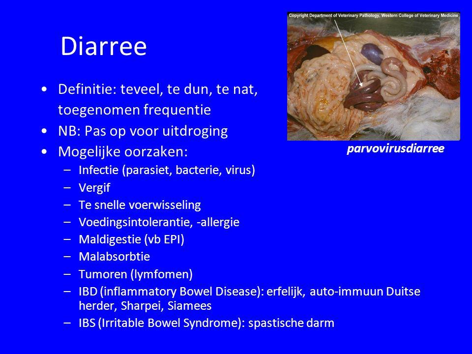Diarree Definitie: teveel, te dun, te nat, toegenomen frequentie