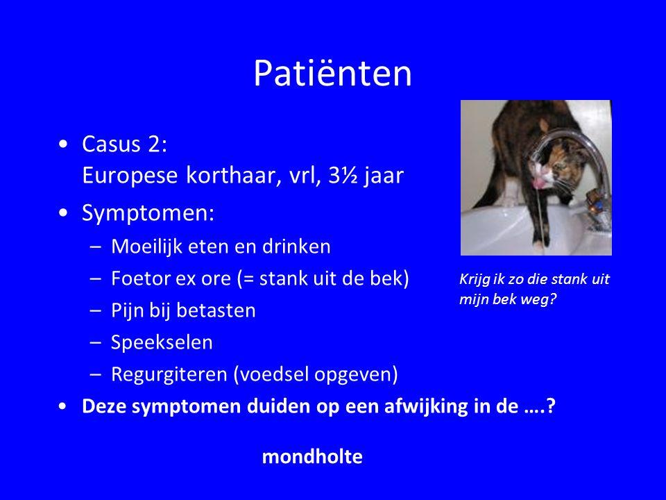 Patiënten Casus 2: Europese korthaar, vrl, 3½ jaar Symptomen: