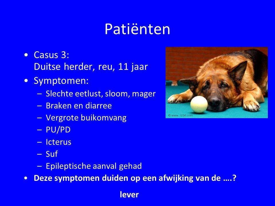 Patiënten Casus 3: Duitse herder, reu, 11 jaar Symptomen:
