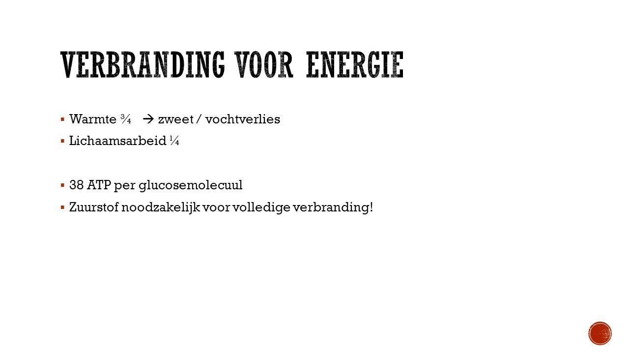 Verbranding voor energie
