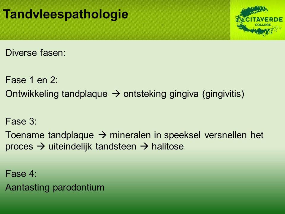 Tandvleespathologie Diverse fasen: Fase 1 en 2: