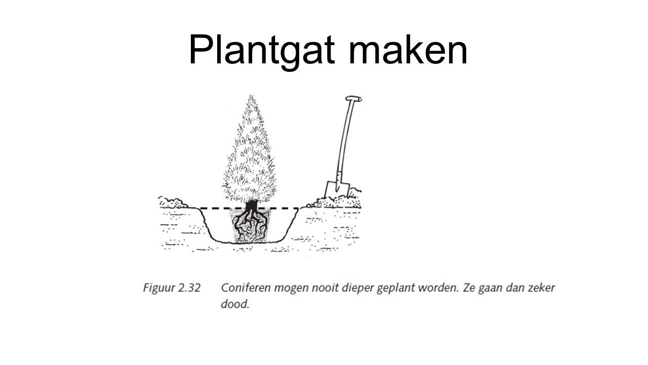 Plantgat maken